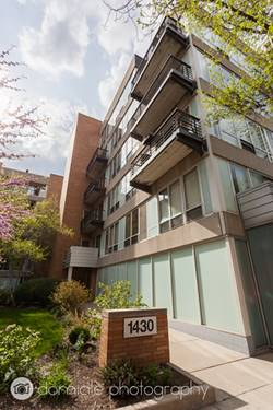 1430 S Michigan Unit 204, Chicago, IL 60605 South Loop