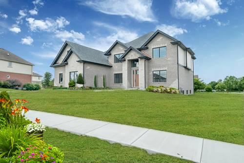22506 Oakfield, Frankfort, IL 60423