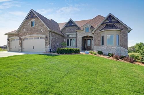 13935 S Stonebridge Woods, Homer Glen, IL 60491