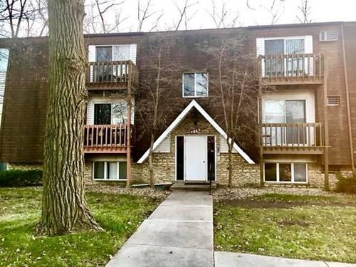 216 Madison Unit 1D, Joliet, IL 60435