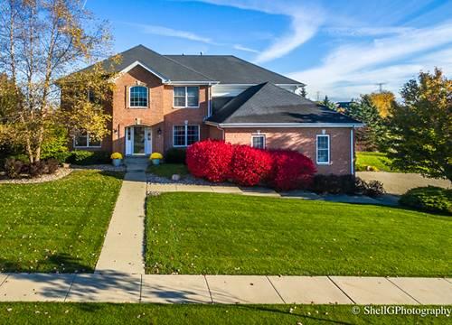 10854 Pembrook, Frankfort, IL 60423