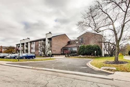 3085 Pheasant Creek Unit 205, Northbrook, IL 60062