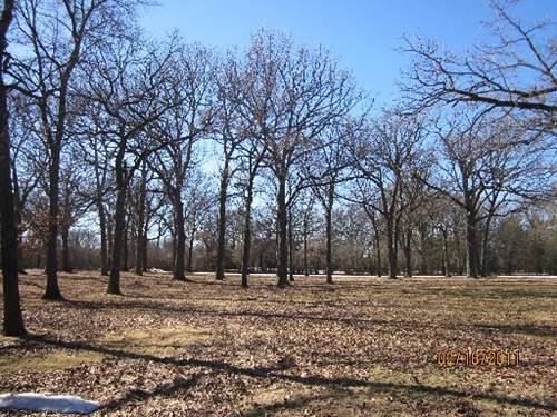 313 Oak Brook, Oak Brook, IL 60523