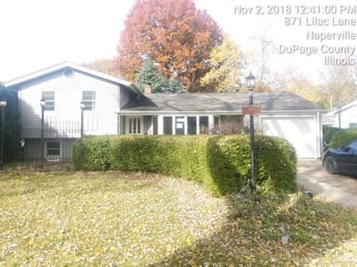 867 Lilac, Naperville, IL 60540