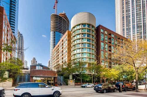 480 N Mcclurg Unit 313, Chicago, IL 60611 Streeterville