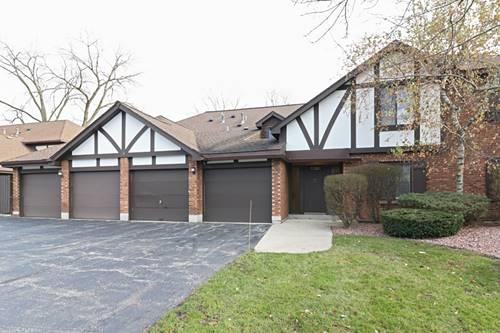 11201 Cottonwood Unit 20D, Palos Hills, IL 60465
