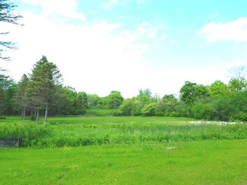 1250 Woodfield, Green Oaks, IL 60048