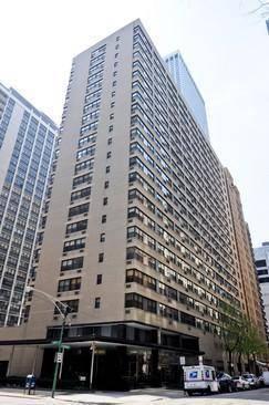 850 N Dewitt Unit 17J, Chicago, IL 60611 Streeterville
