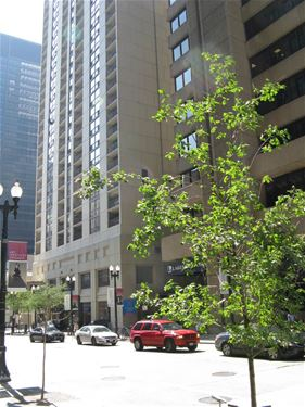 200 N Dearborn Unit 4201, Chicago, IL 60601 Loop