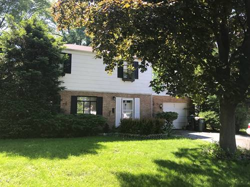 514 S Dryden, Arlington Heights, IL 60005