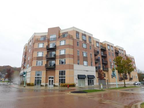 300 Village Unit 109, Willow Springs, IL 60480