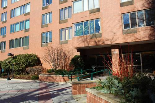 801 S Plymouth Unit 806, Chicago, IL 60605 South Loop