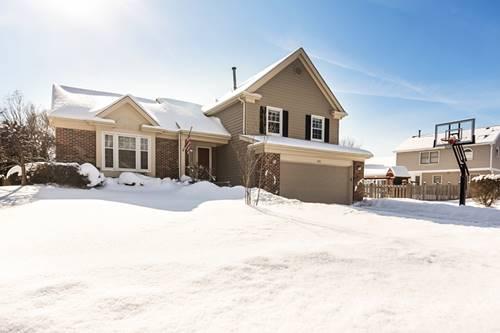 375 Thompson, Buffalo Grove, IL 60089