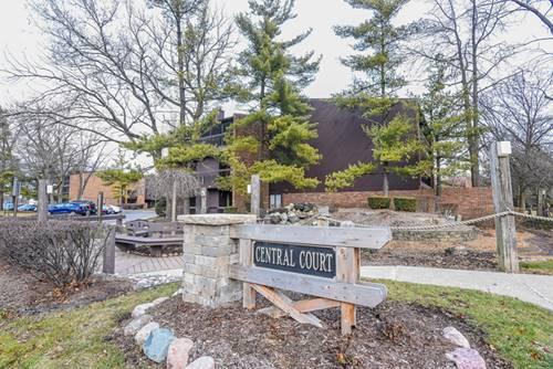 14515 Central Unit G2, Oak Forest, IL 60452