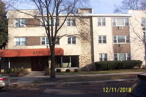 426 S Lombard Unit 201, Oak Park, IL 60302