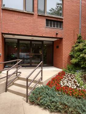 1115 S Plymouth Unit 113, Chicago, IL 60605 South Loop