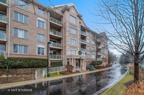 1705 Pavilion Unit 407, Park Ridge, IL 60068