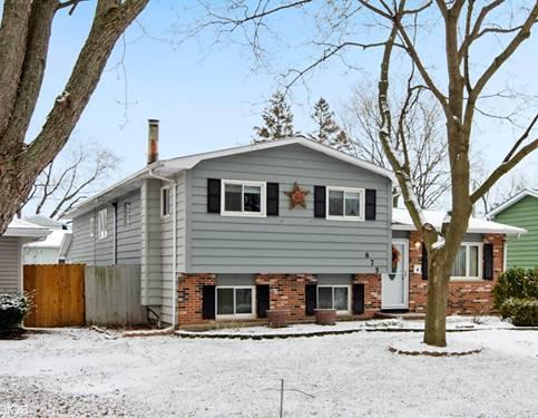 675 Pierce, Grayslake, IL 60030