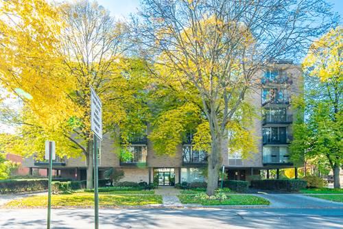 424 Park Unit 206, River Forest, IL 60305