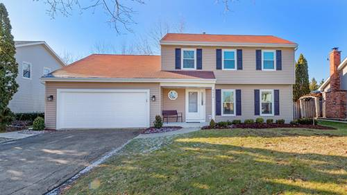8414 Chelsea, Woodridge, IL 60517