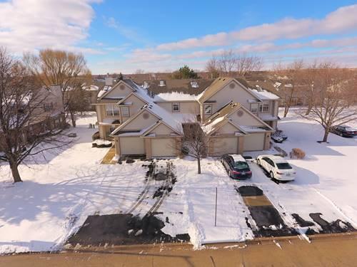 1608 Grove, Schaumburg, IL 60193