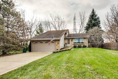 13819 W Stoneoak, Homer Glen, IL 60491