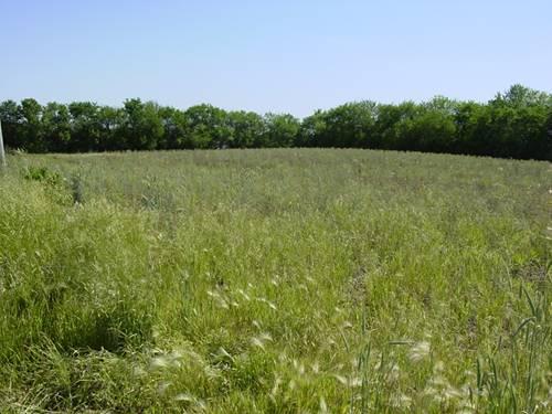 16450 S Cedar, Homer Glen, IL 60491