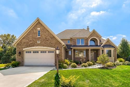 26009 W Stewart Ridge, Plainfield, IL 60585