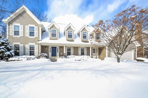 316 Hobble Bush, Vernon Hills, IL 60061
