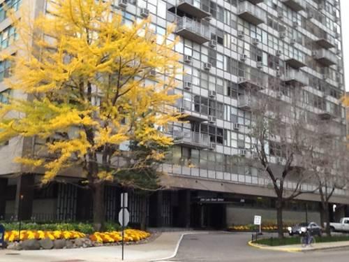 1000 N Lake Shore Unit 1007, Chicago, IL 60611 Gold Coast