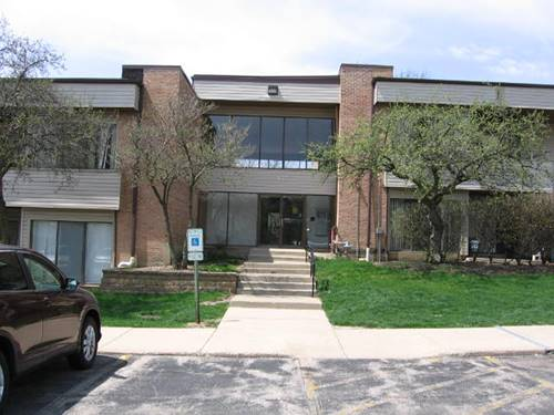 920 Sterling Unit 213, Palatine, IL 60067