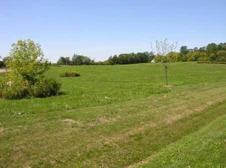 11601 Emily, Spring Grove, IL 60081