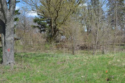Lot 10 Bunny, Mchenry, IL 60051