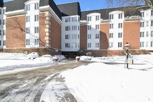 175 Lake Unit 350, Buffalo Grove, IL 60089