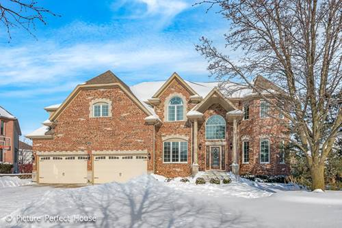 2408 Williamstown, Naperville, IL 60564