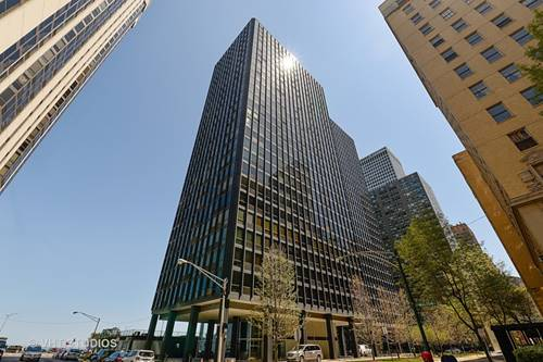 910 N Lake Shore Unit 817, Chicago, IL 60611 Streeterville