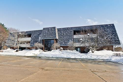 100 Red Top Unit 203, Libertyville, IL 60048