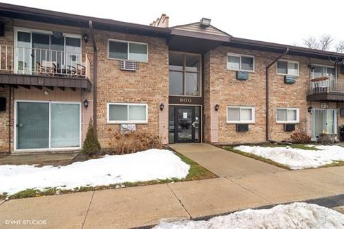 800 E Old Willow Unit 2207, Prospect Heights, IL 60070