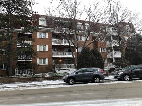 209 Vine Unit 3D, Park Ridge, IL 60068