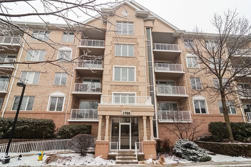 1705 Pavilion Unit 503, Park Ridge, IL 60068