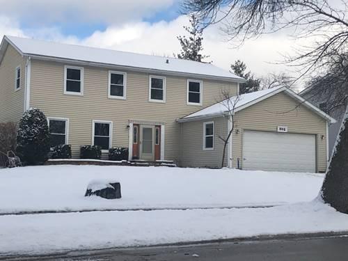 805 Sara, Naperville, IL 60565