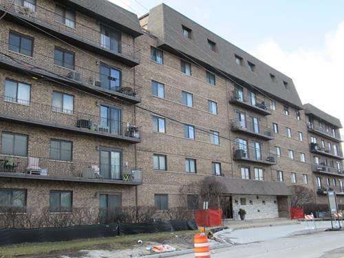 960 S River Unit 311, Des Plaines, IL 60016