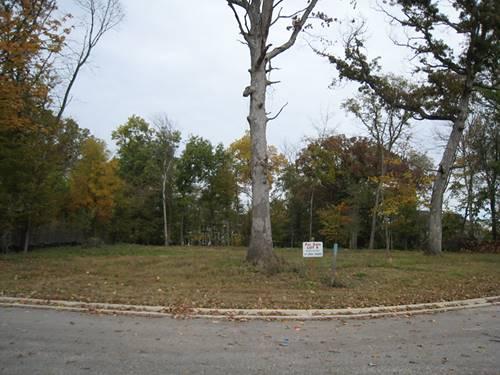 812 Hoyden, Sugar Grove, IL 60554