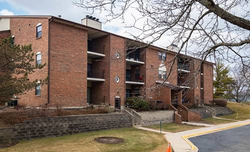 740 Weidner Unit 206, Buffalo Grove, IL 60089