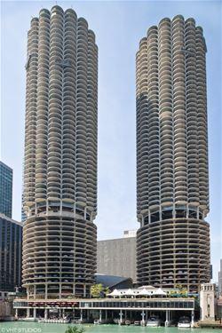 300 N State Unit 4728, Chicago, IL 60654 River North