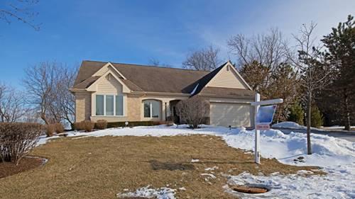 58 Brittany, Oakwood Hills, IL 60013