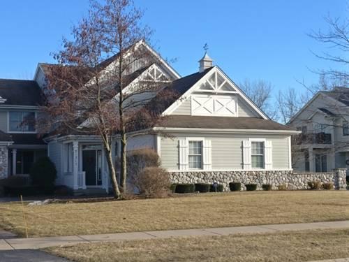 21317 Windy Hill, Frankfort, IL 60423