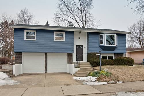 904 E Barberry, Mount Prospect, IL 60056