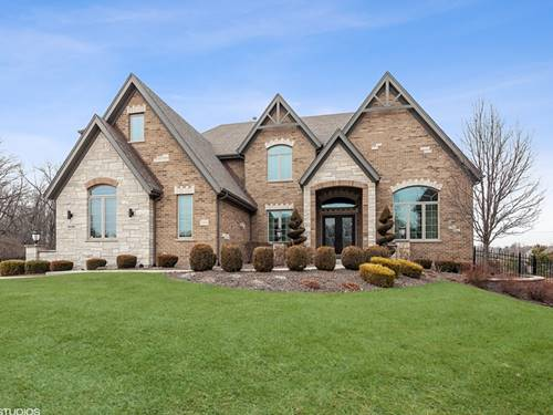 11038 Fawn View, Orland Park, IL 60467