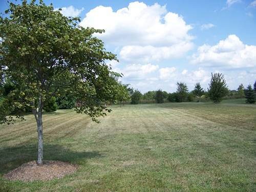 920 Prairie View, Somonauk, IL 60552
